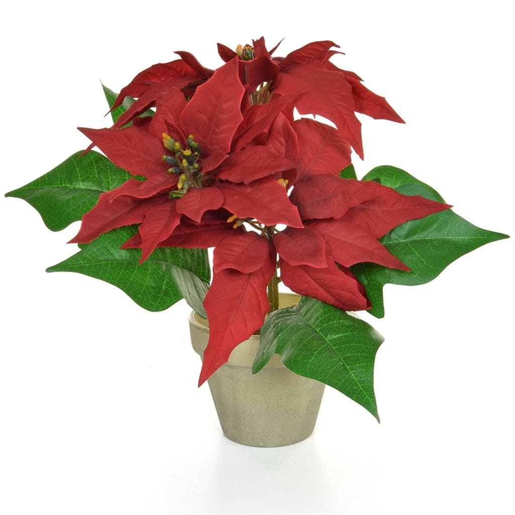 CH-Potted Poinsettia Red 26cm