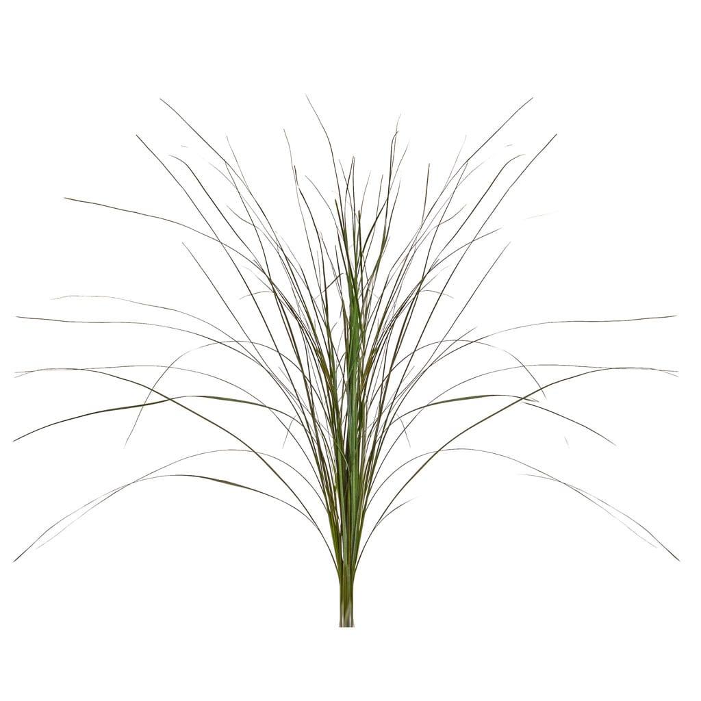 Grass Bear Green FR 60/65cm