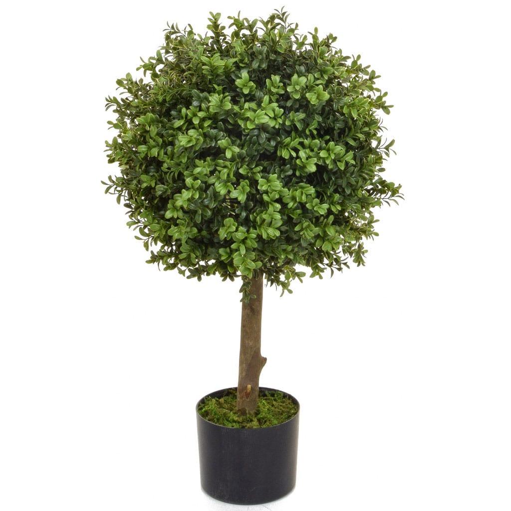 Topiary Buxus 40 Ball 80cm BA