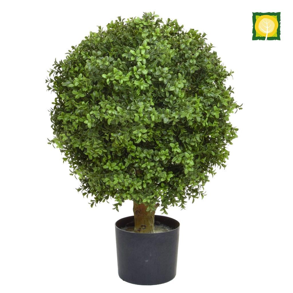 Topiary Buxus Ball PR 40cm UV