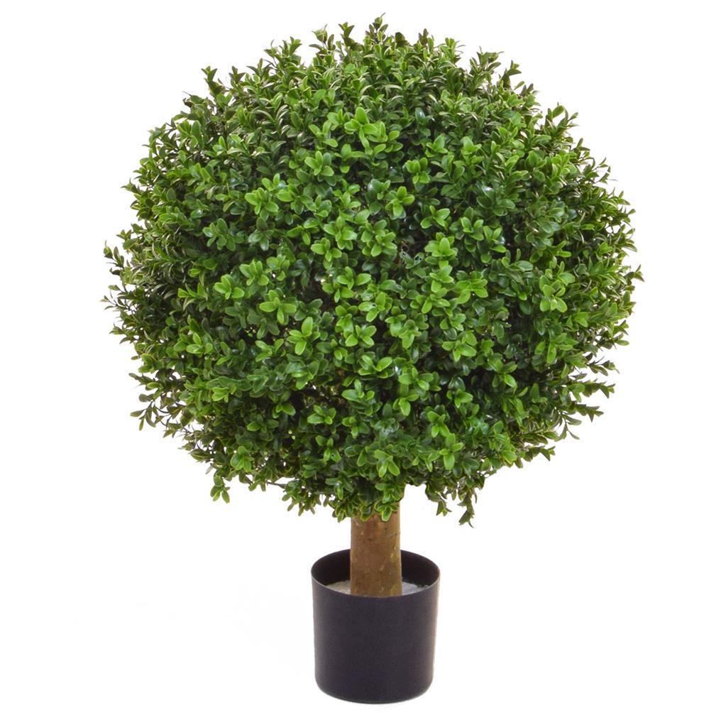 Topiary Buxus Ball 40cm