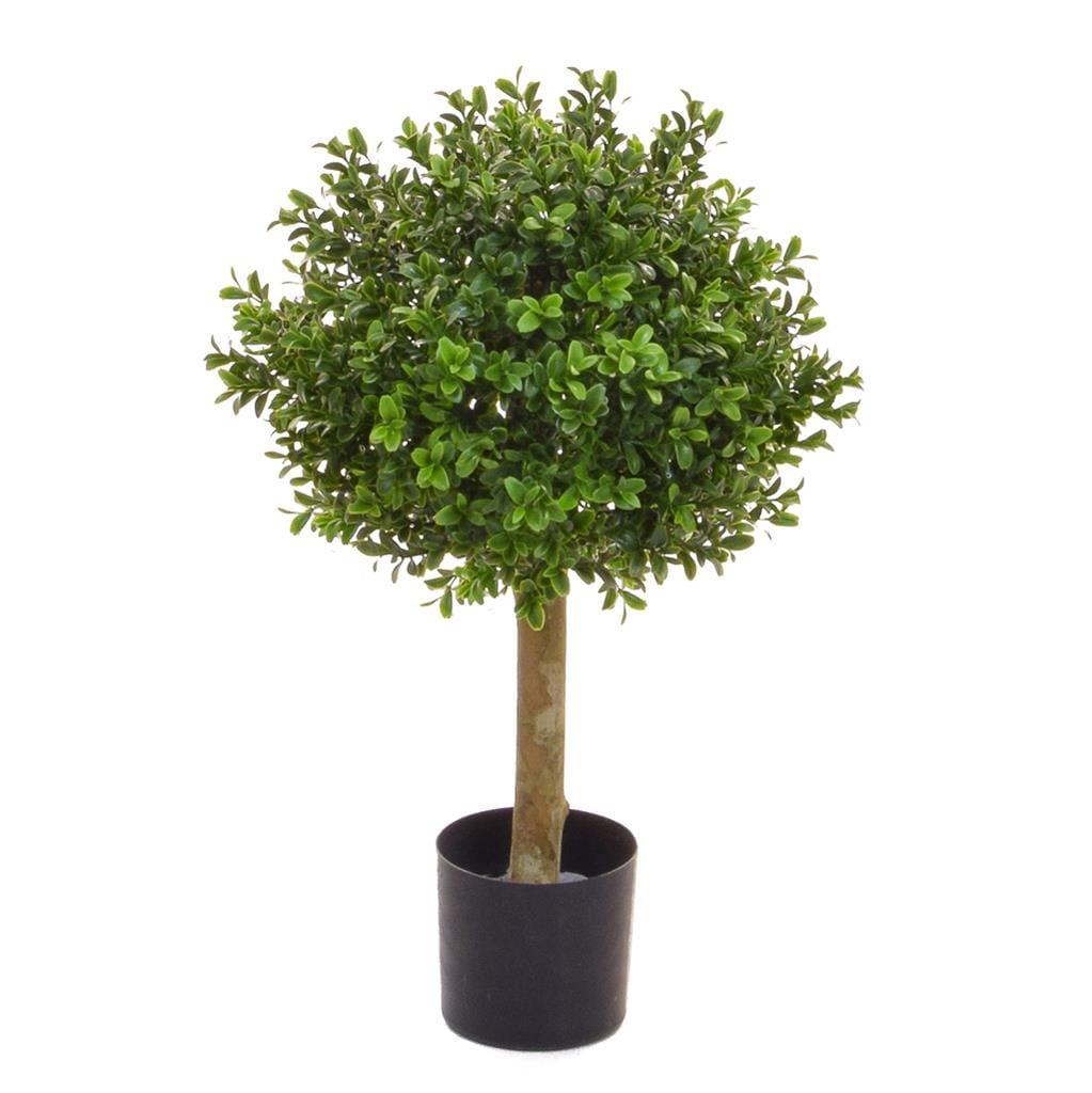 Topiary Buxus Ball 30cm