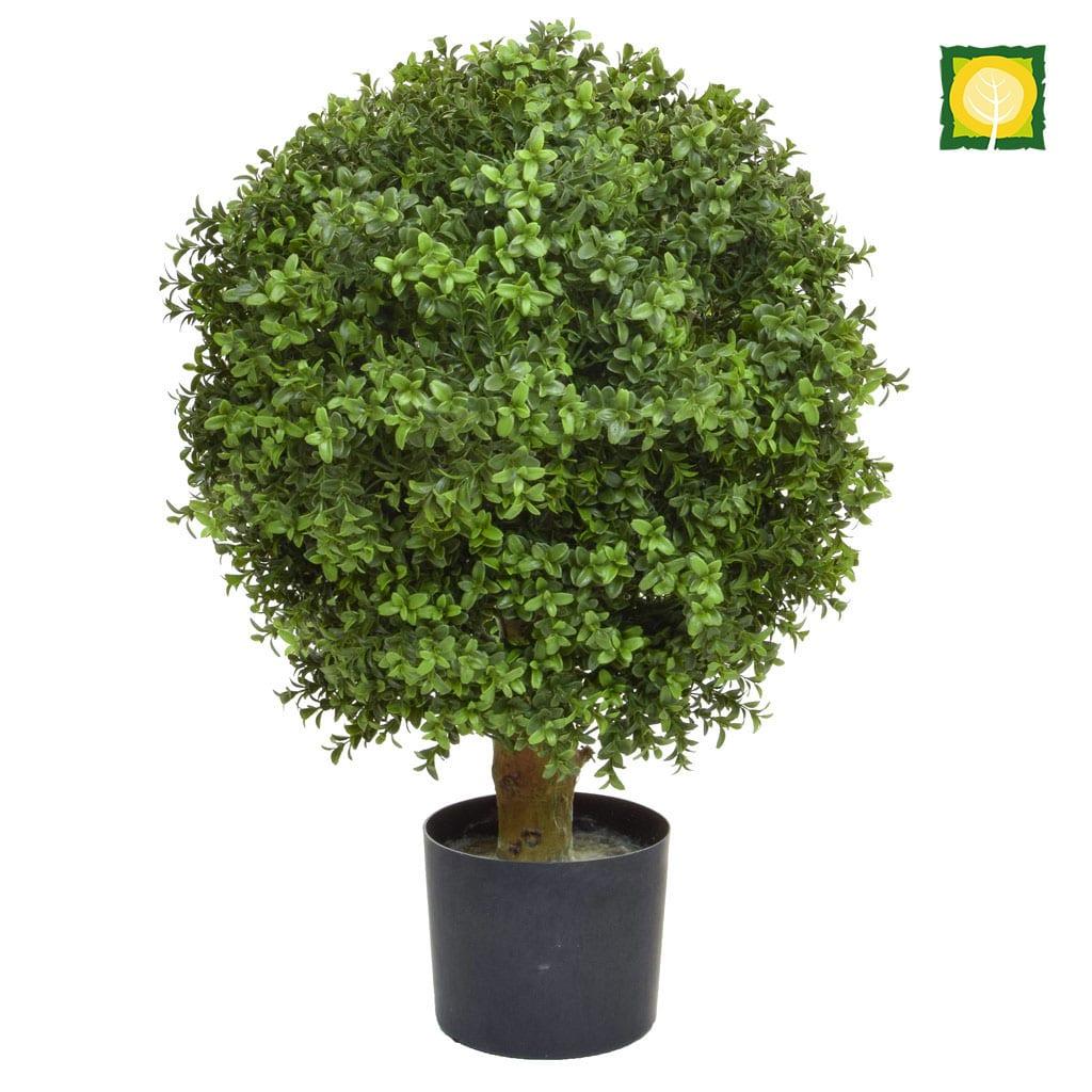 Topiary Buxus Ball PR 50cm UV