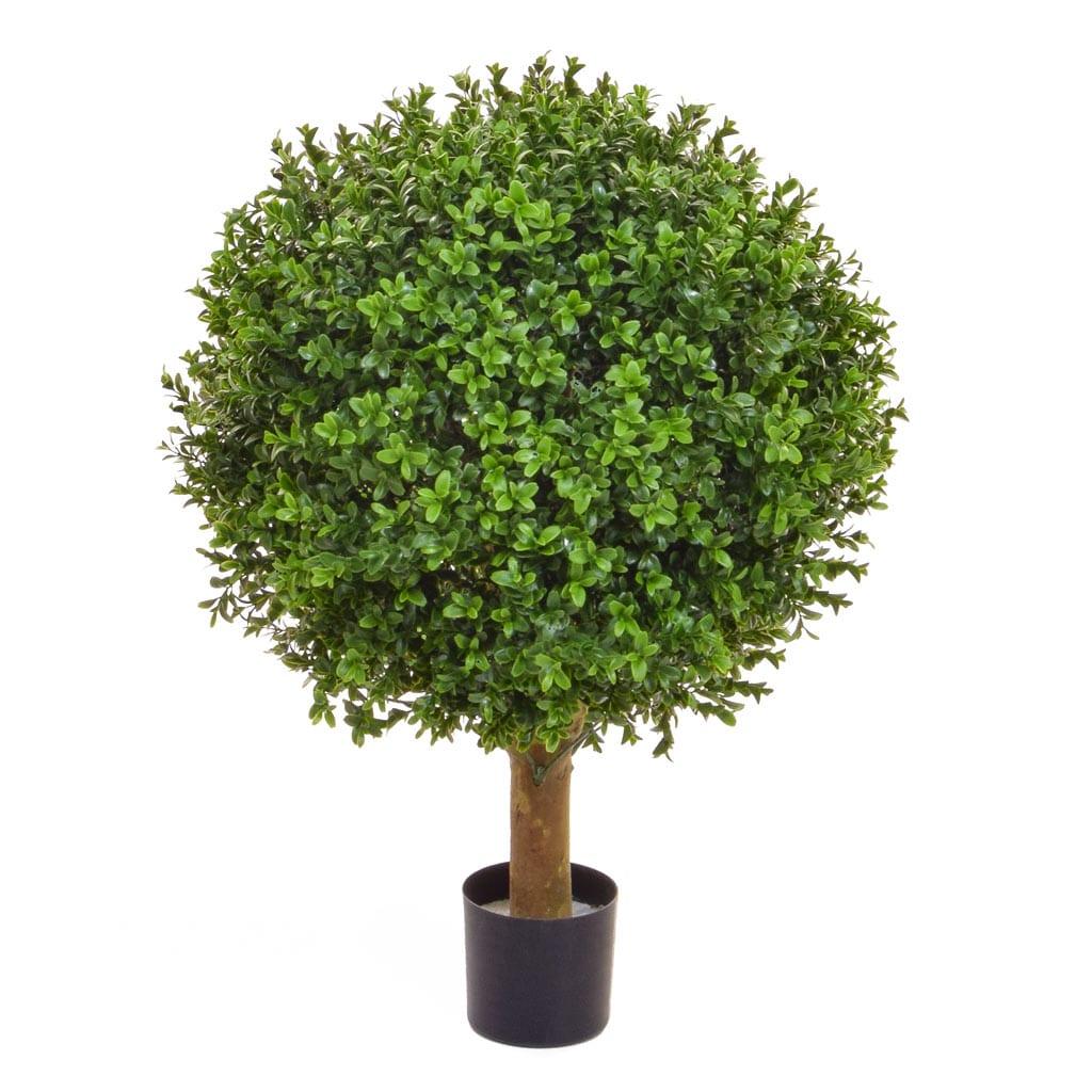 Topiary Buxus Ball 50cm