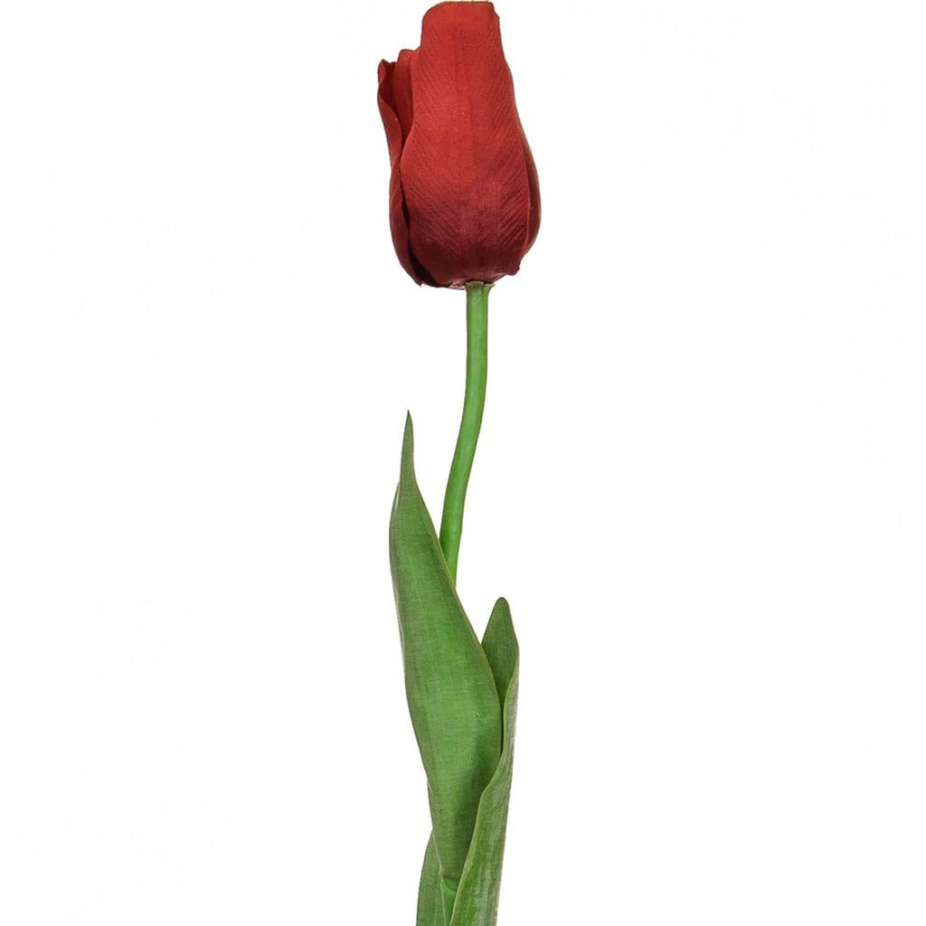 SF Tulip Elisa Red S 68cm