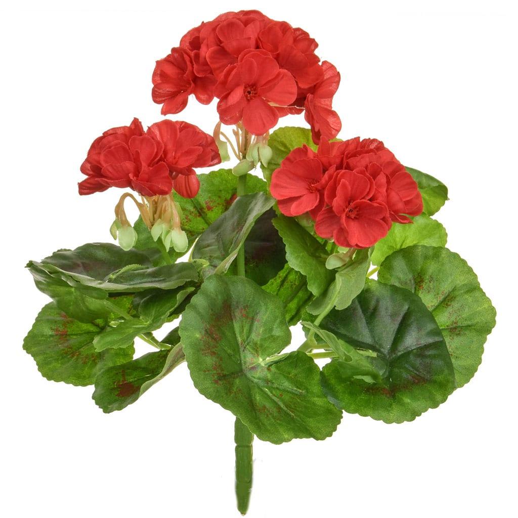 Plants Flowering Geranium A Red 23cm
