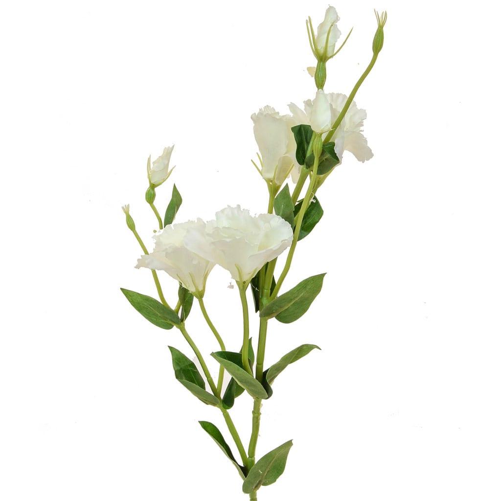 SF W Eustoma White 80cm