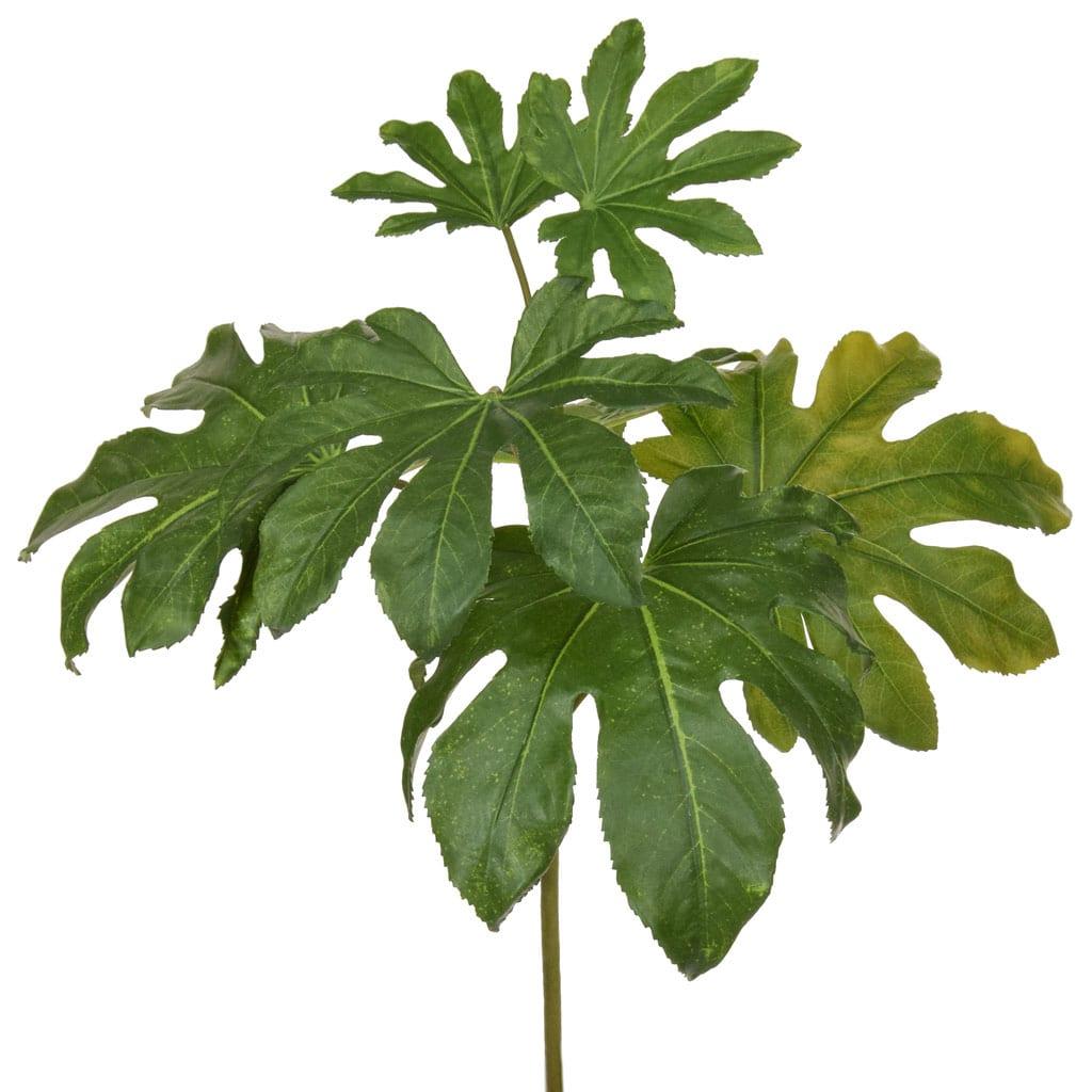 SF Fatsia Leaf Spray XH 75cm