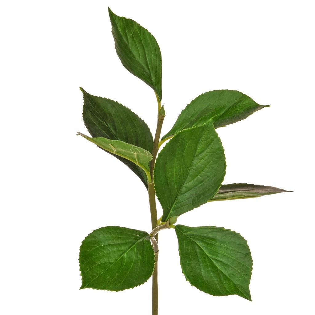 SF Hydrangea Leaf Spray XH 80cm