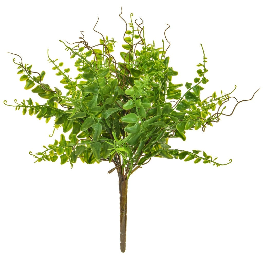 Plants Base Bush Green Mini Fern 32cm