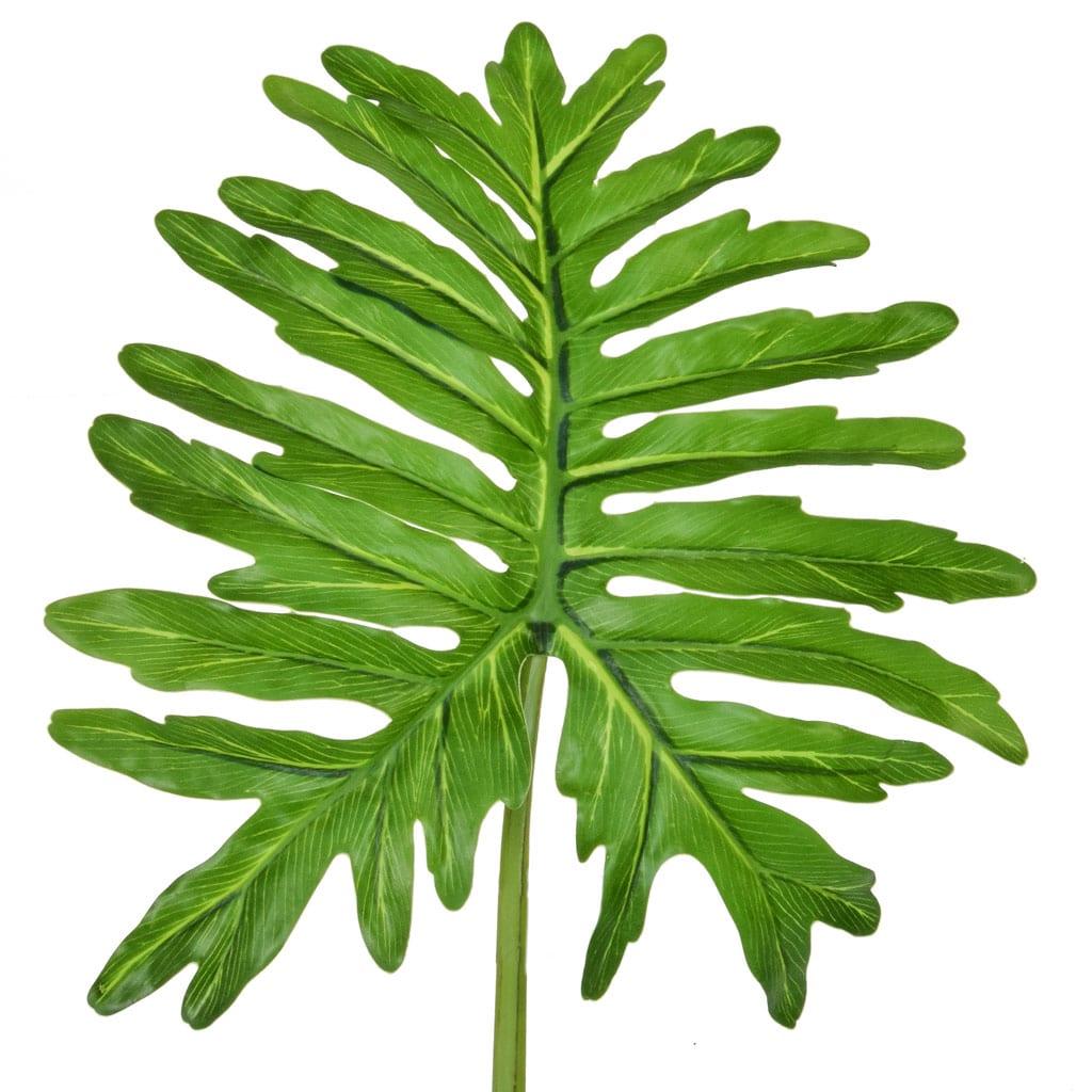 SF Leaf Selloum Green GB 90cm