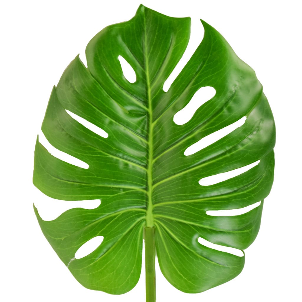 SF Leaf Giant Monstera Green GB 100cm