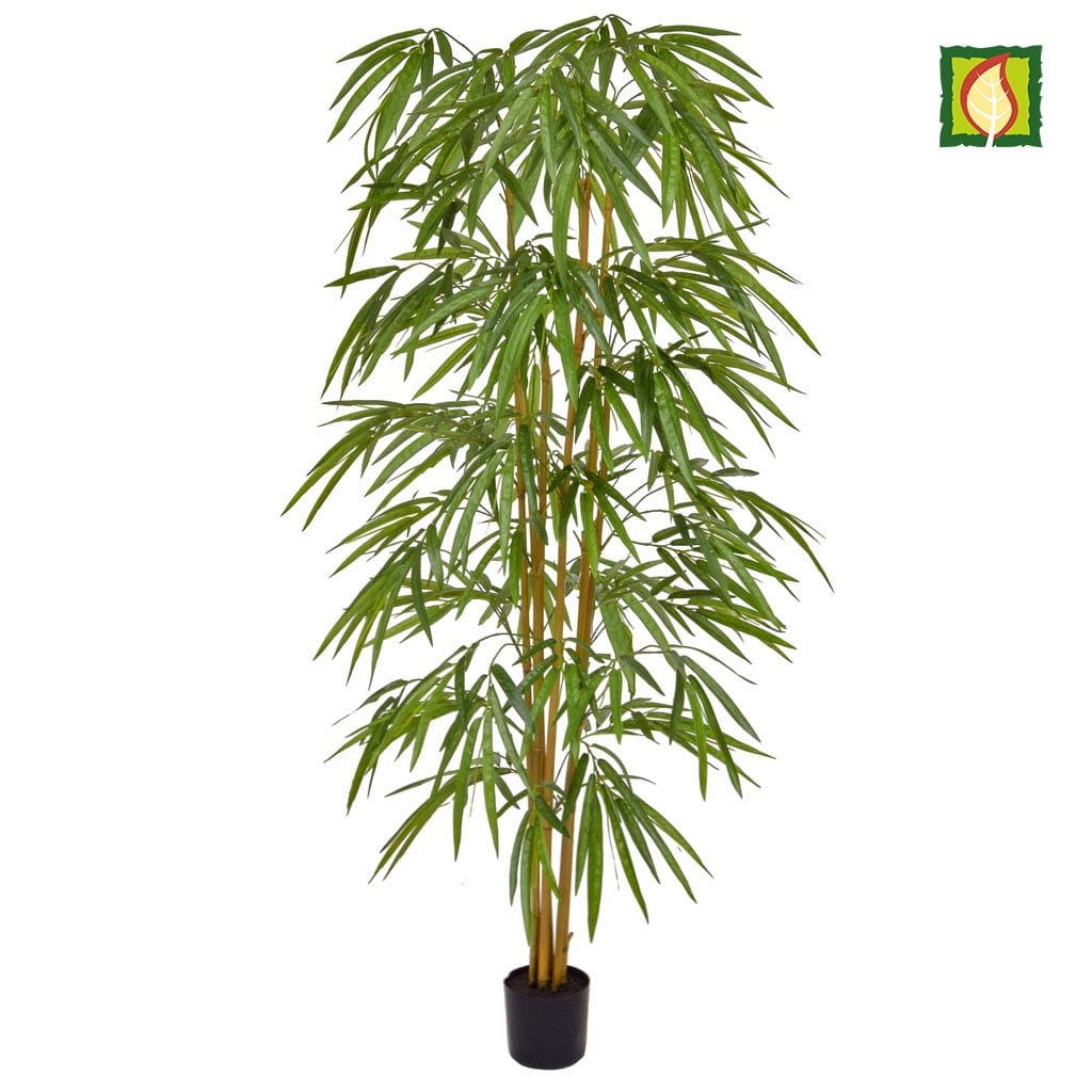 NTT Bamboo YF 150cm FR