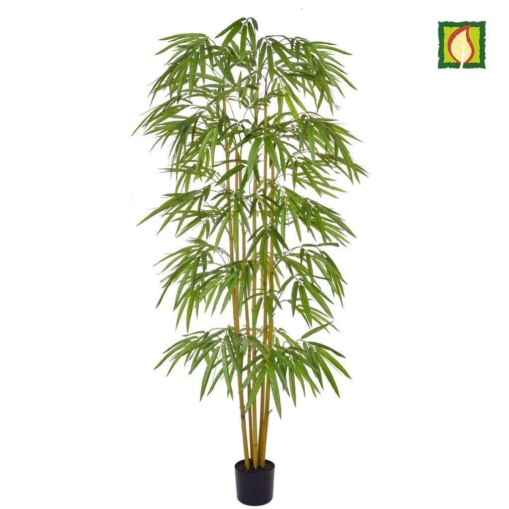 NTT Bamboo YF 180cm FR