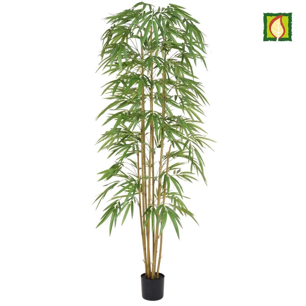 NTT Bamboo YF 240cm FR