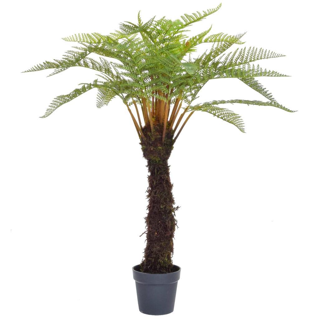 Plants Tree Fern in Blk Pot YF 120cm