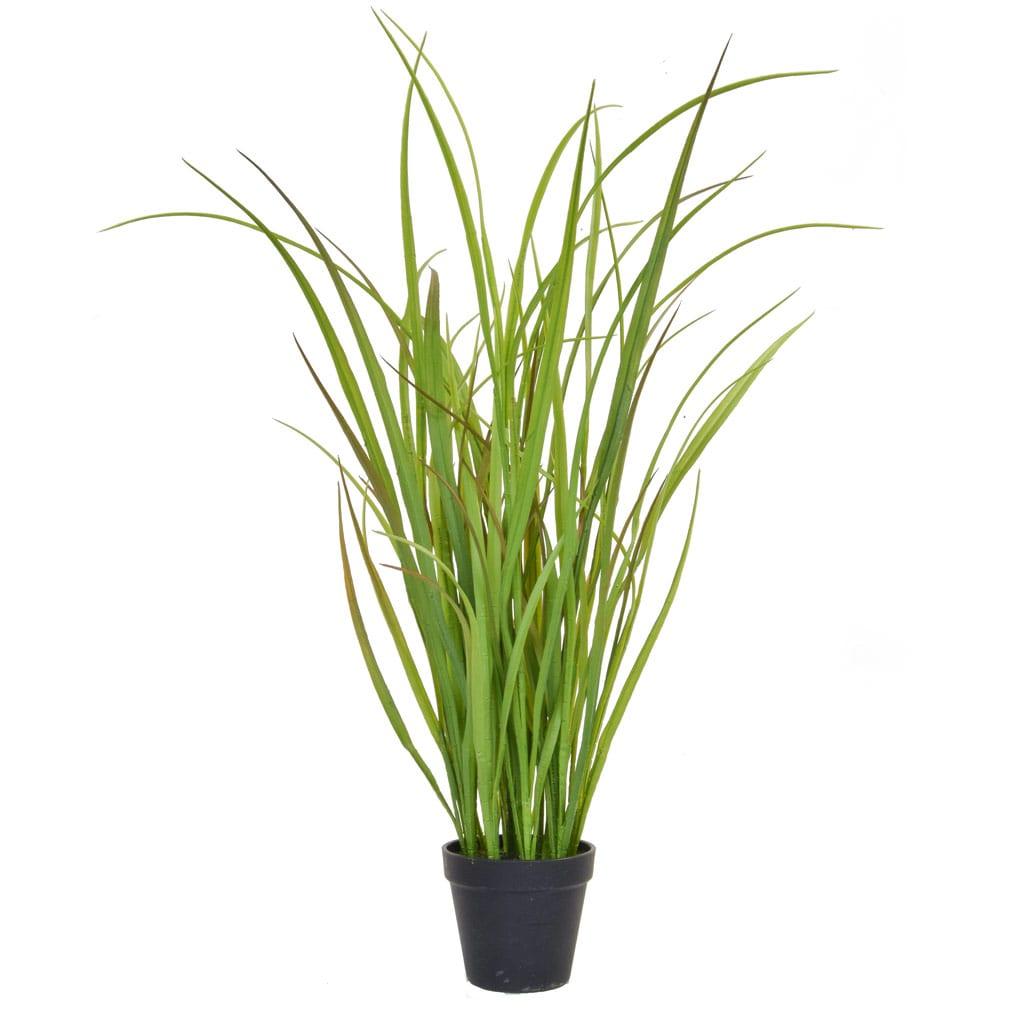 Grass in Black Pot YF 85cm
