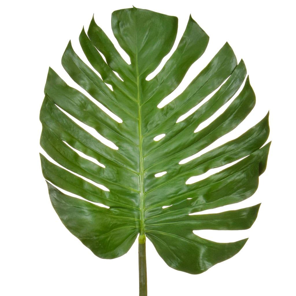 SF Leaf Monstera JA 137cm