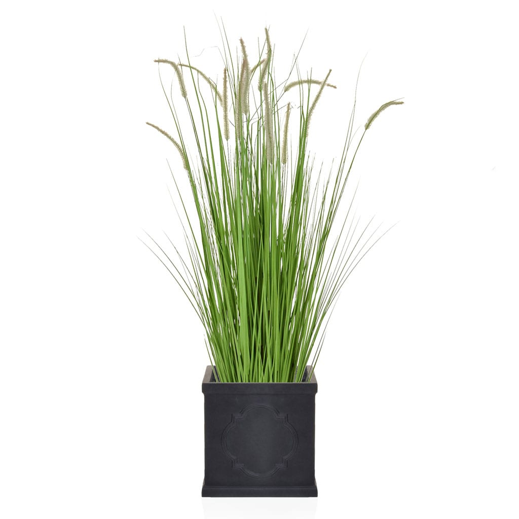 AN-Dogtail Grass London Planter 185cm