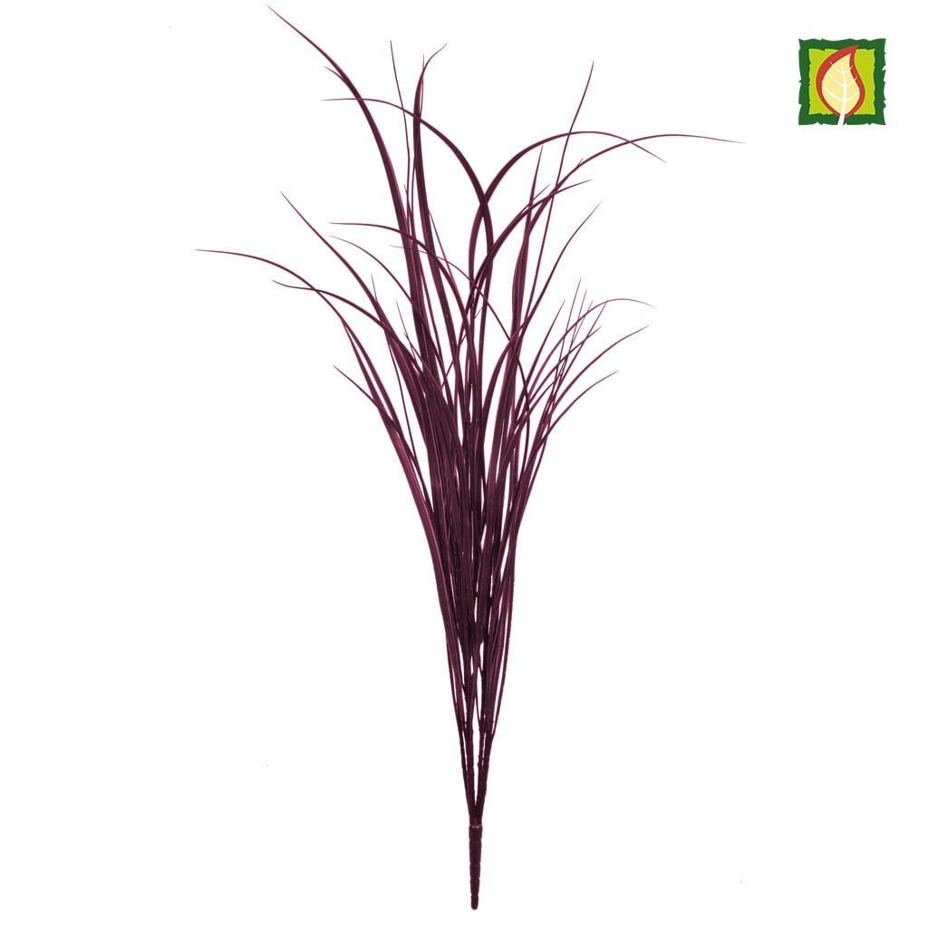 Grass Bush Burgundy YF 90cm FR