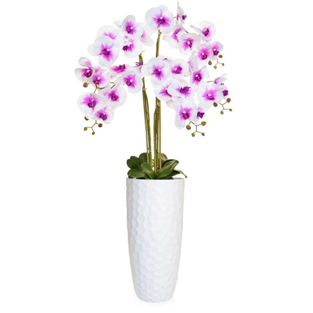 AN-Orchid White in Paris Planter 135cm