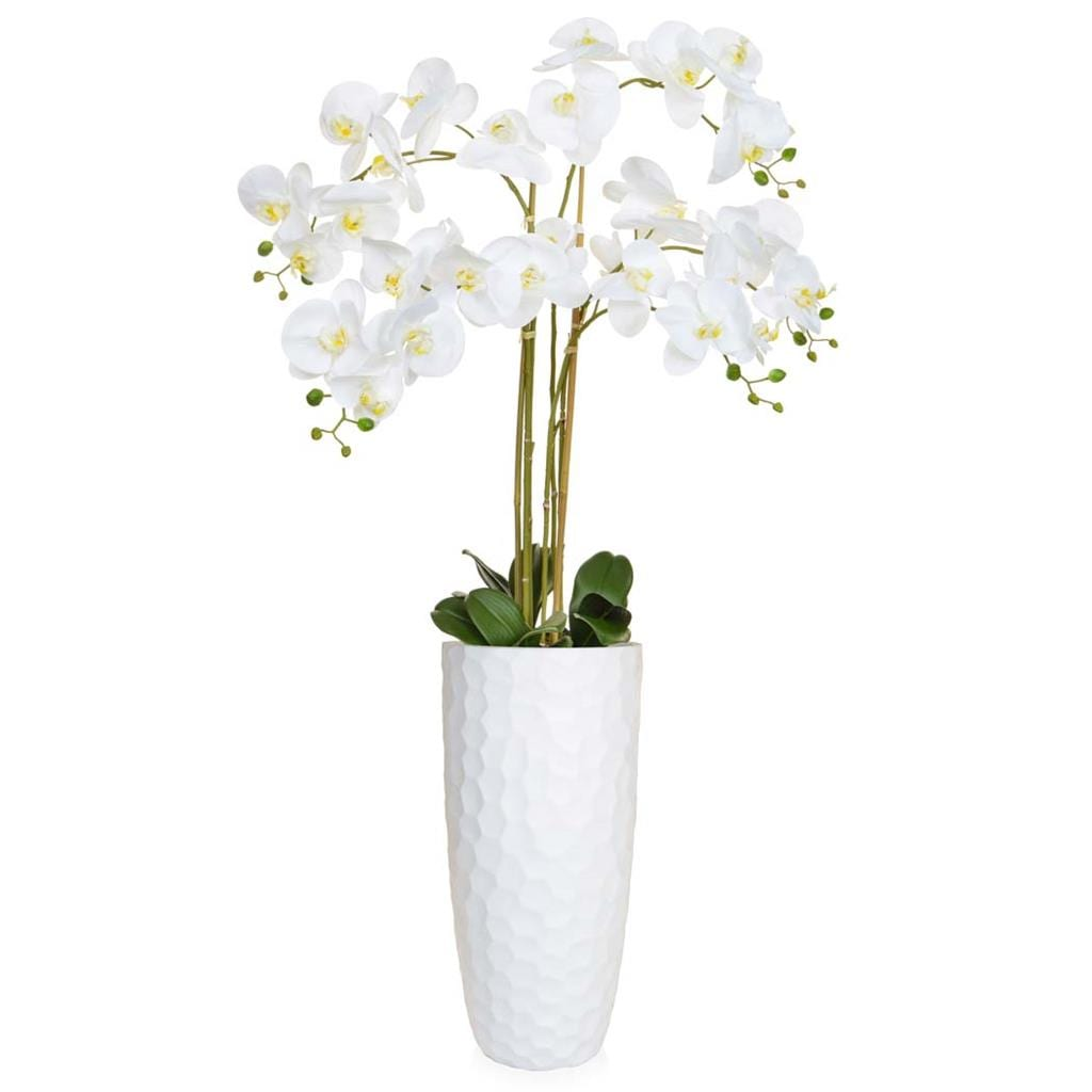AN-Orchid Pk/Wh in Paris Planter 135cm