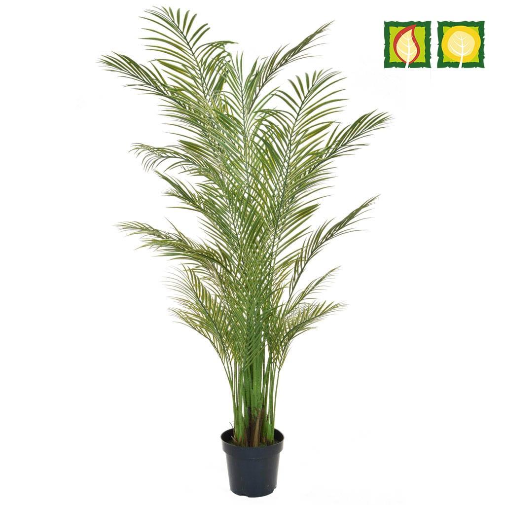 Palm Areca PI 210cm FR UV