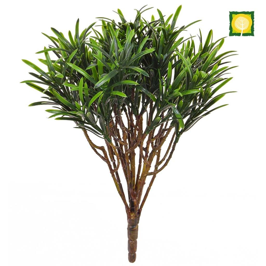 Plants Base Podocarpus Green 30cm UV