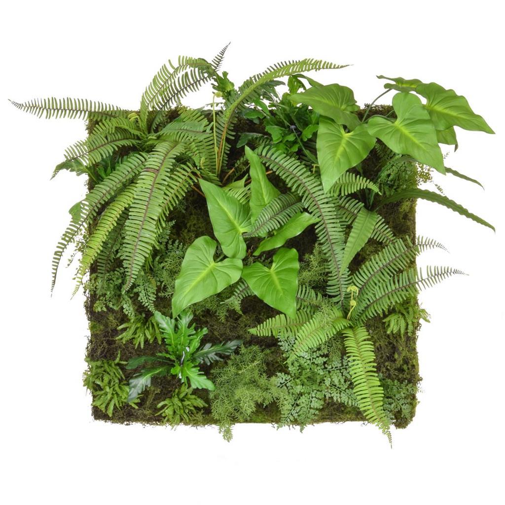 Greenwall Tropical Leaves 100x100cm