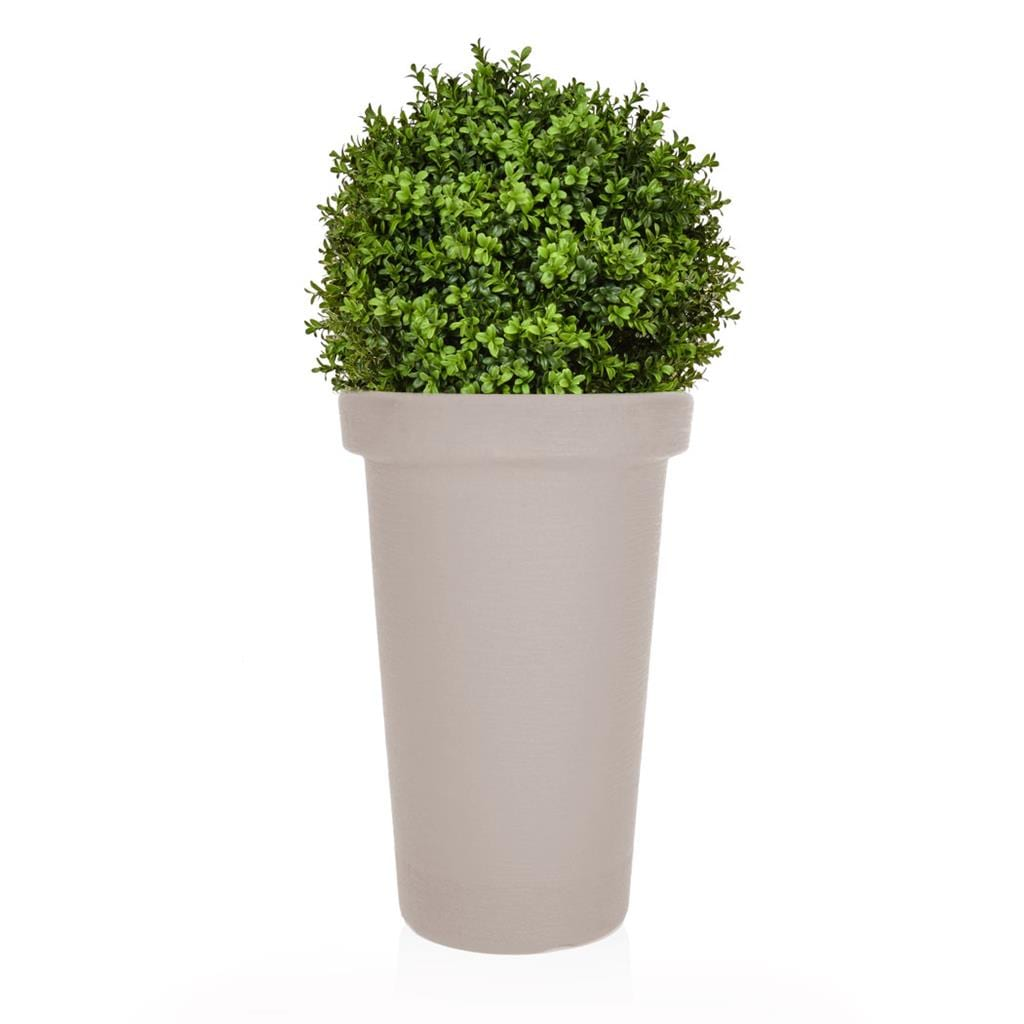 AN-Buxus Ball 50 PR in Moc Tower 100cm