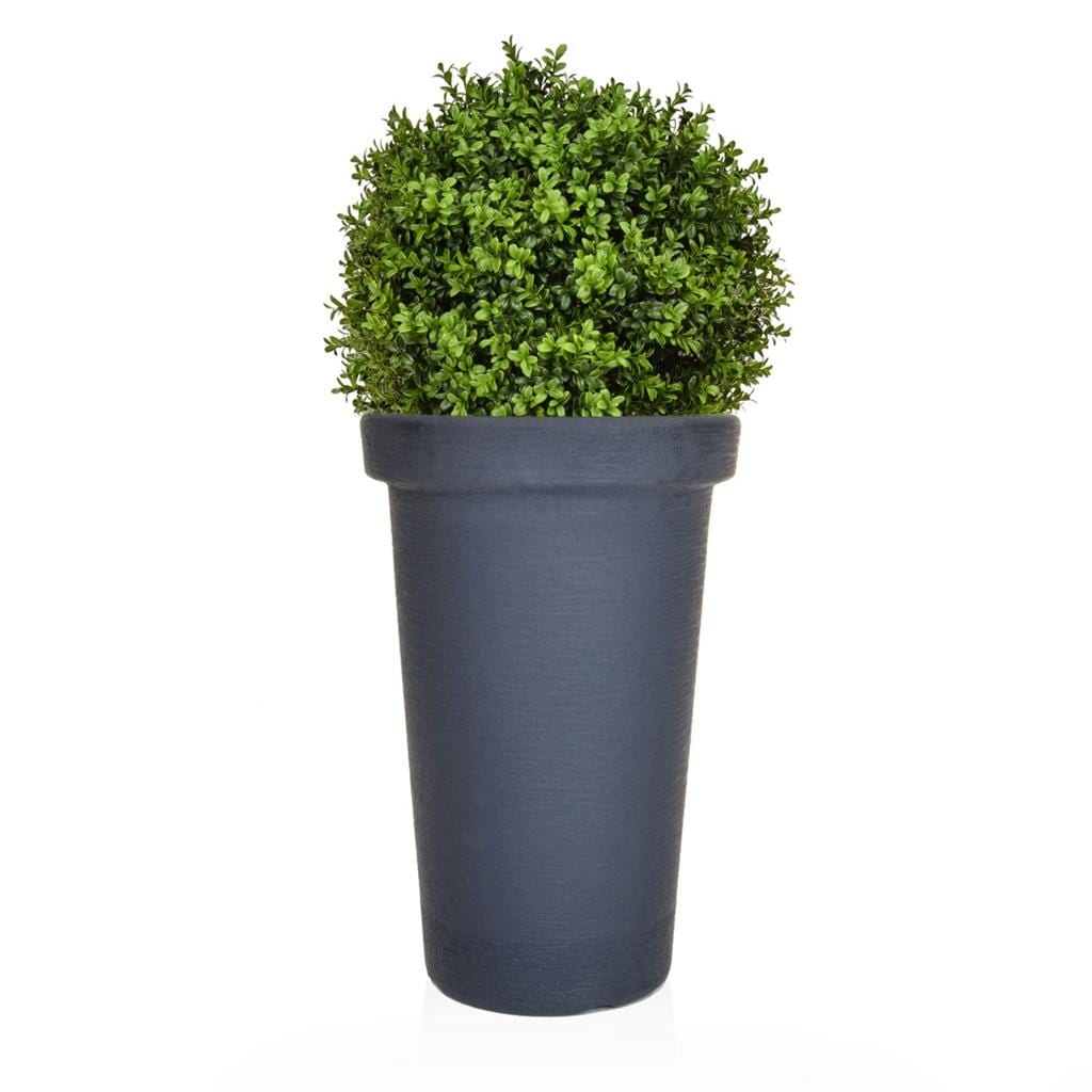 AN-Buxus Ball 50 PR in Ant Tower 100cm