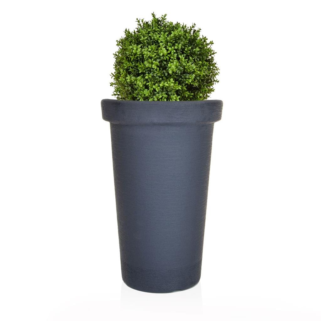 AN-Buxus Ball 30 PR in Ant Tower 80cm