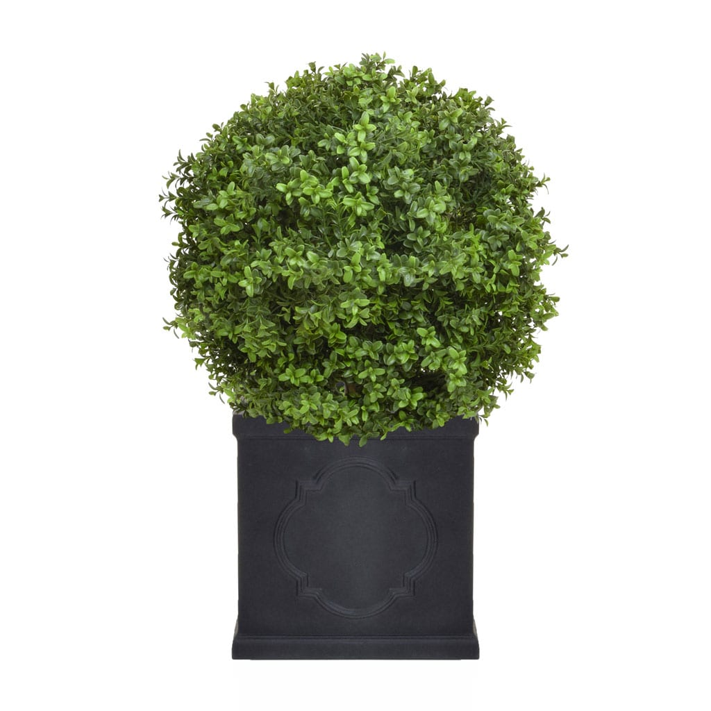 AN-Buxus Ball 50 PR in London Planter 55cm