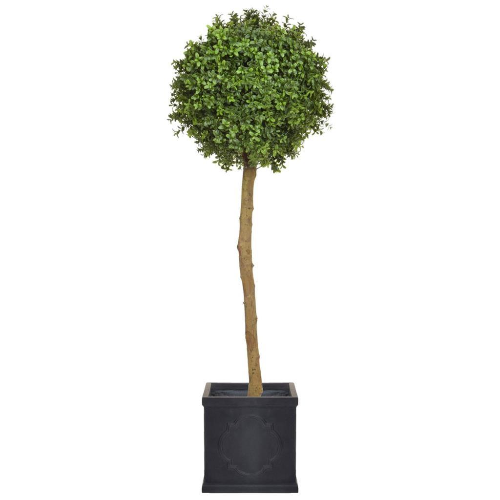 AN-Buxus Ball tree PR in London Planter 120cm