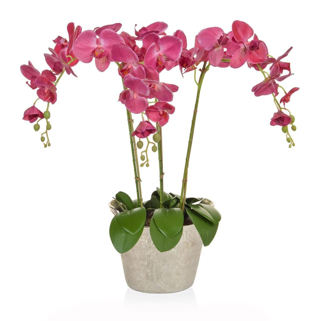 AN-Dk Pink Orchids in Slv Ice Bucket 80cm
