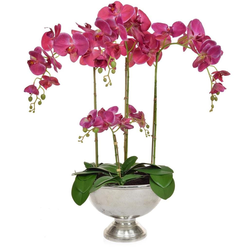 AN-Dk Pink Orchids XJ in Silver Bowl 75cm