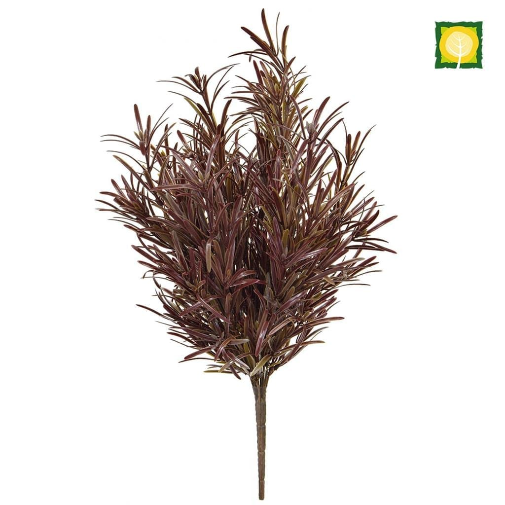 Plants Base Podocarpus Brown YF 42cm UV