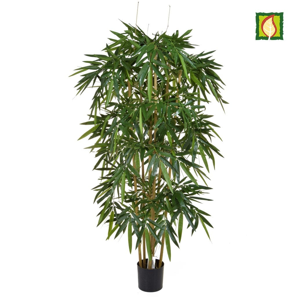 NTT Bamboo Natural 150cm FR
