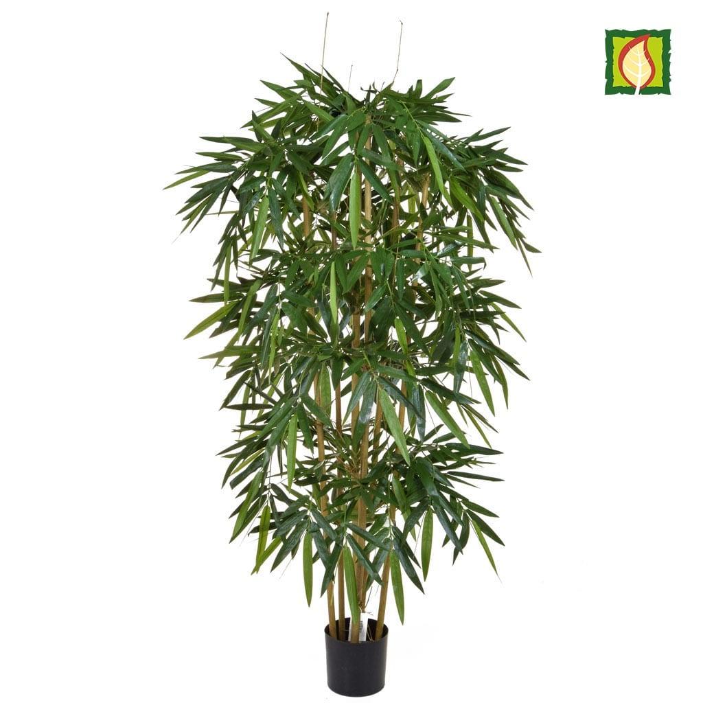 NTT Bamboo Natural 180cm FR