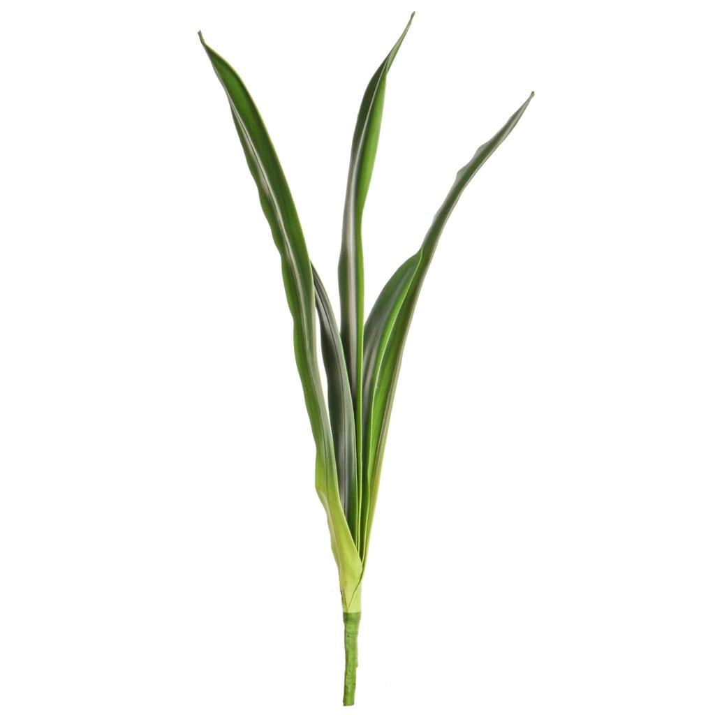 SF Leaf Spider Lily K Green 71cm