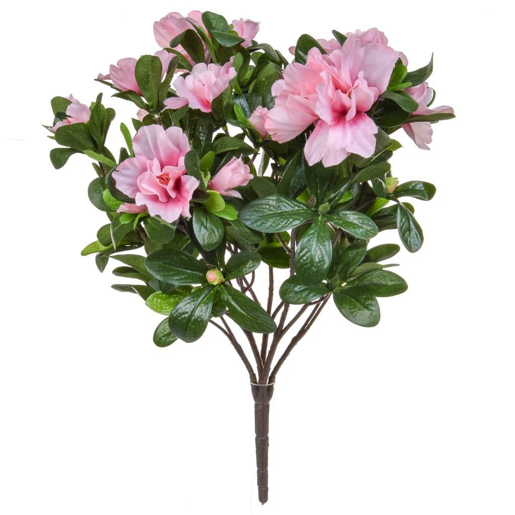 Plants Flowering Azalea Bush Pink 38cm