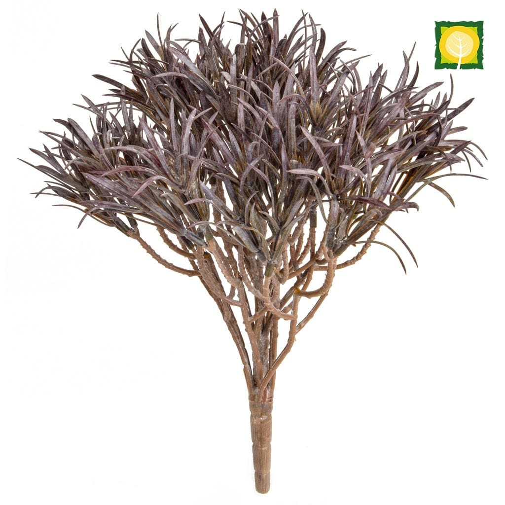 Plants Base Podocarpus Brown 46cm UVSILX