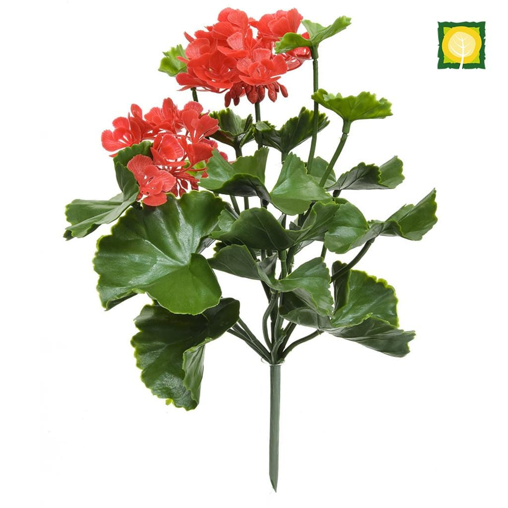 Plants Flowering Geranium Red UVSILX