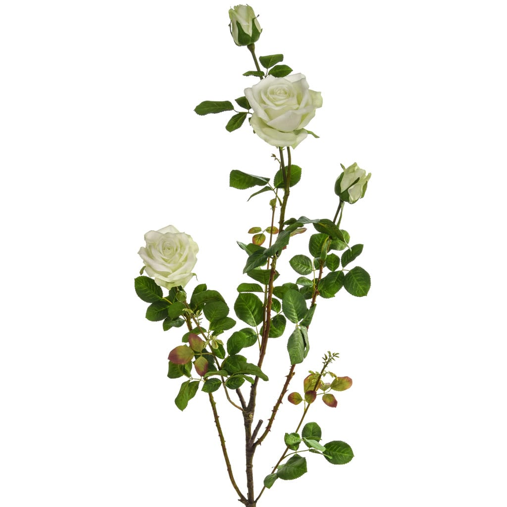 SF Rose Plant Giant K White 132.5cm
