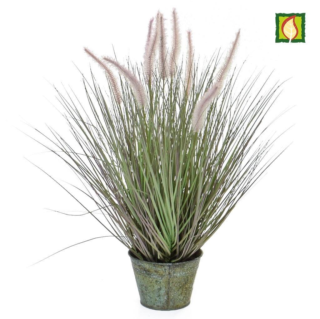 Grass Dogtail Grass with metal pot 58cm FR