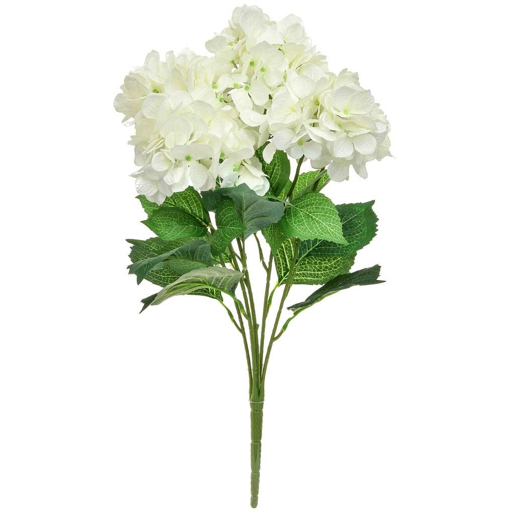 Plants Hydrangea Bush GB White 58cm