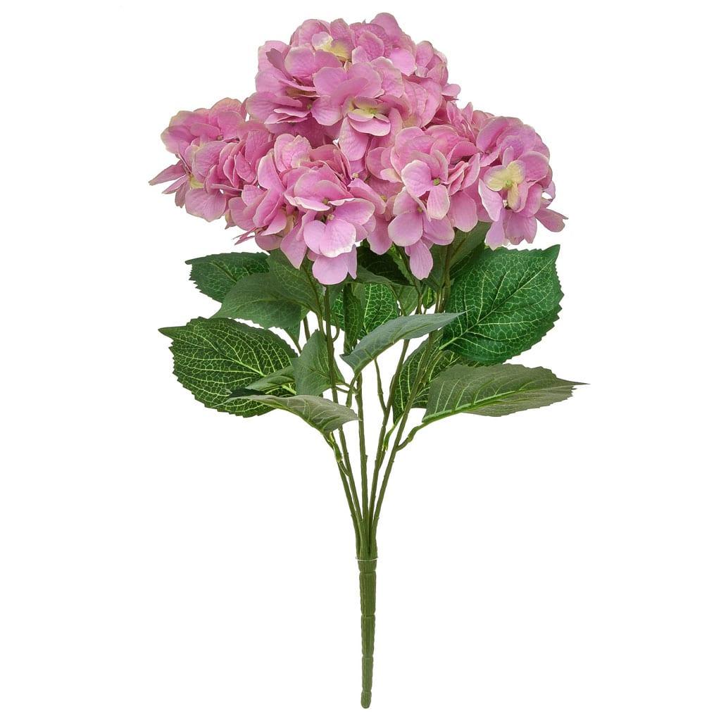 Plants Hydrangea Bush GB Pink 58cm