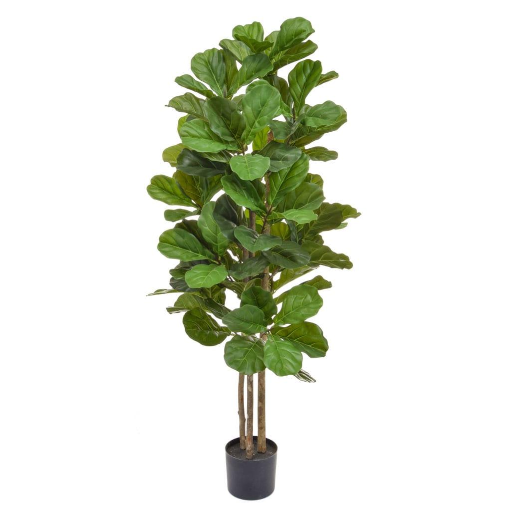 NTT Fiddle Tree 150cm BA