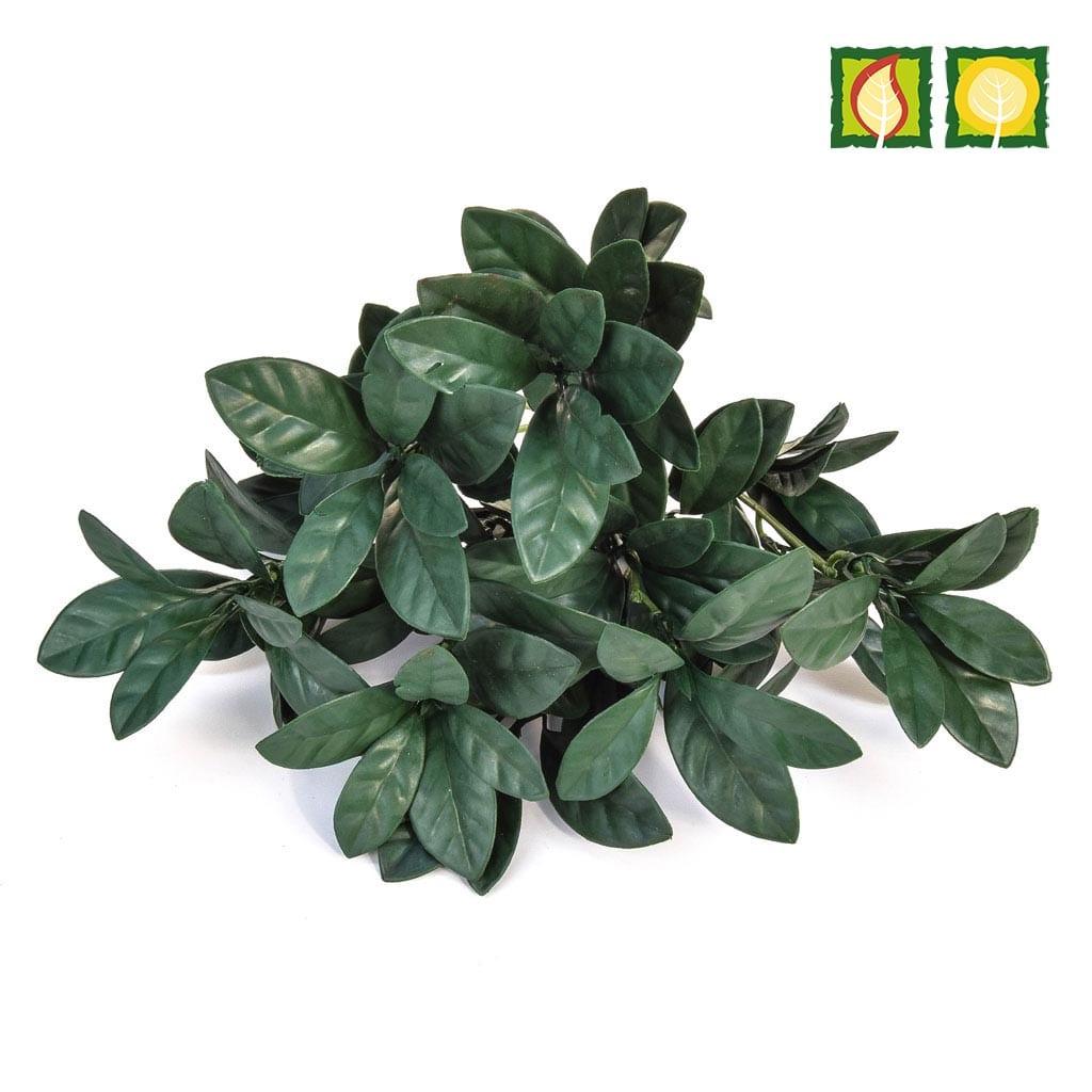 Plants GW Pothos Green Plastic 25cm UV FR