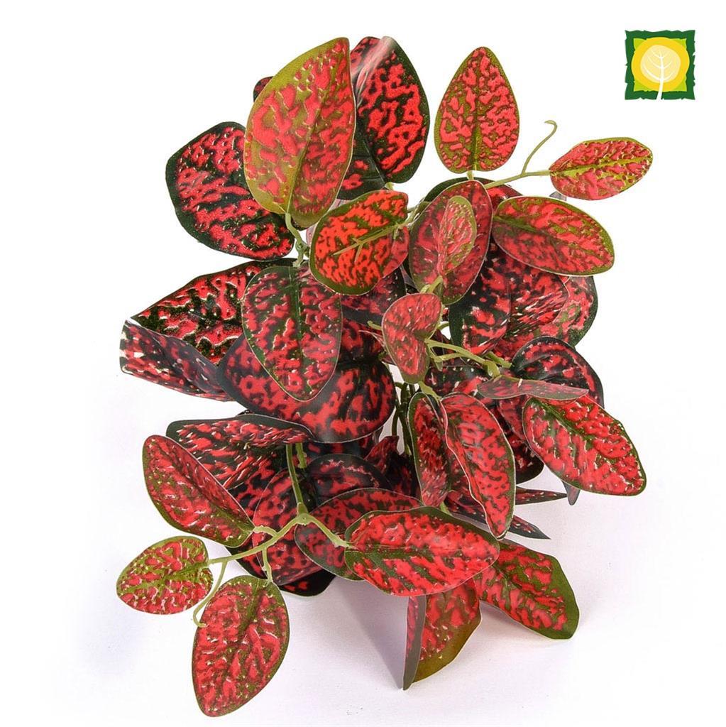 Plants GW Japonica Red 25cm UV